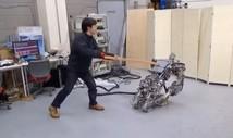 RHP2 - гуманоидный робот, созданный для того, чтобы падать, подниматься и снова падать