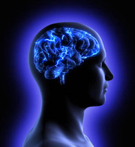 How the Brain Remembers Pleasure: Implications for Addiction
