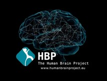 The Human Brain Project Begins