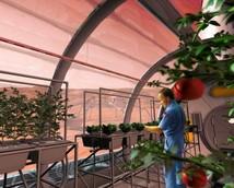 Марс превратят в научную лабораторию